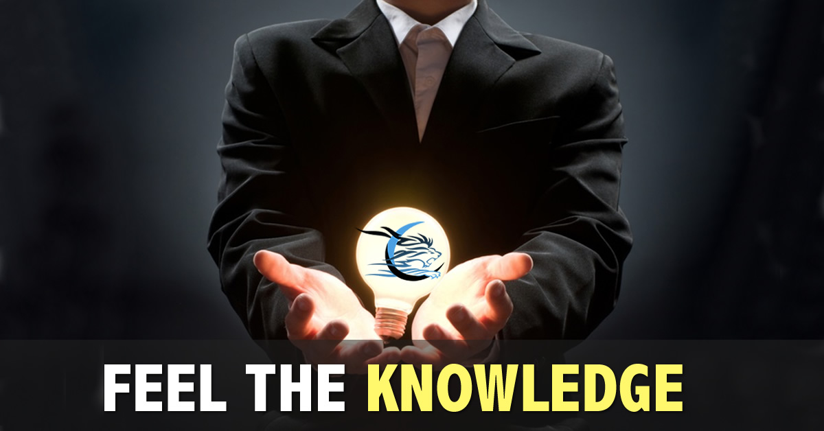 United Business Academy - Feel the knowledge