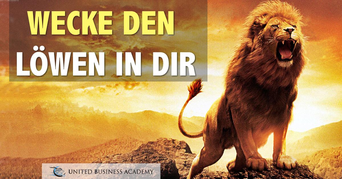 United Business Academy - Wecke den Löwen in dir