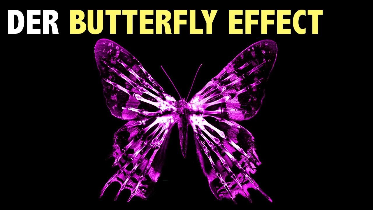 der-butterfly-effect.jpg